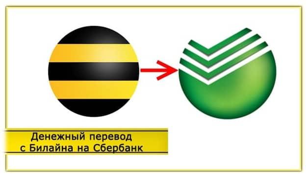 Транзакция переводов с телефона Билайн на карту Сбербанка